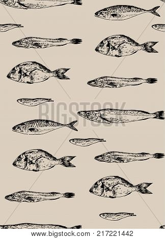 Seamless pattern fish. Background colorful. Vector illustration