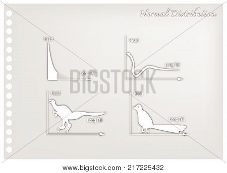 Charts and Graphs, Illustration Paper Art Craft Set of Animal Cartoon of Fat Tailed and Long Tailed Distributions Chart on A Chalkboard Background.