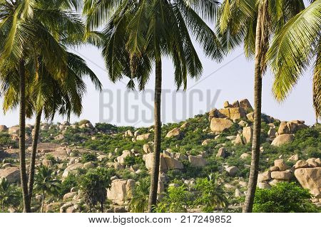 Beautiful nature scenery with blue sky and strange landscape with large rocks is seen through the trunks of palm trees, Hampi, India