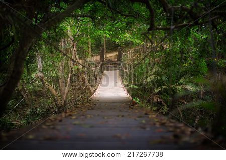 Rope suspension bridge in forest, located at Khao Yai national park