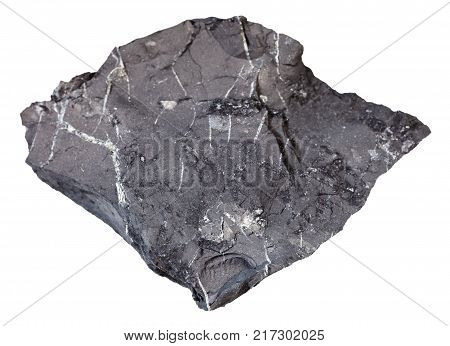 macro shooting of natural mineral rock specimen - rough shungite shale stone isolated on white background from Tolvuya district, Karelia, Russia