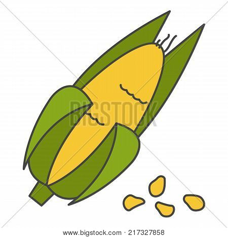 Corn cob in husk flat style vector icon isolated on white background. Important agricultural plant for food industry. Ripe maize seeds cartoon illustration for applications, logos or web design
