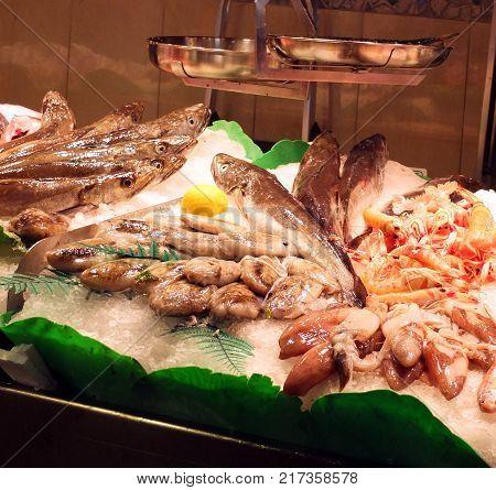Fish shown in La Boqueria market one of the most popular tourist landmarks in the Ciudad Vieja district in Barcelona