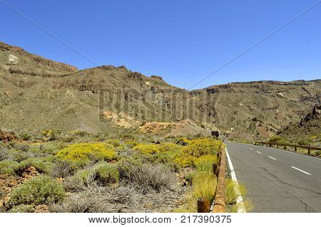 country road in Boca Tauce Mount Teide National Park in Tenerife