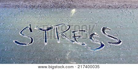 The Word Ptsd Written Frosty Car Glass
