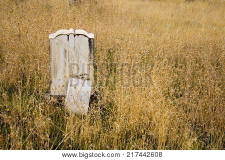 Single Gravestone Alone in the Weeds in an Old Pioneer Cemetery