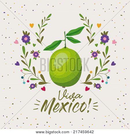 viva mexico colorful poster with lemon fruit vector illustration