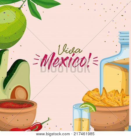 viva mexico colorful poster of mexican traditional drinks and foods vector illustration