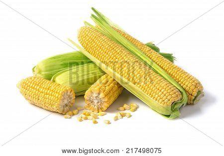 the Fresh corn isolated on white background