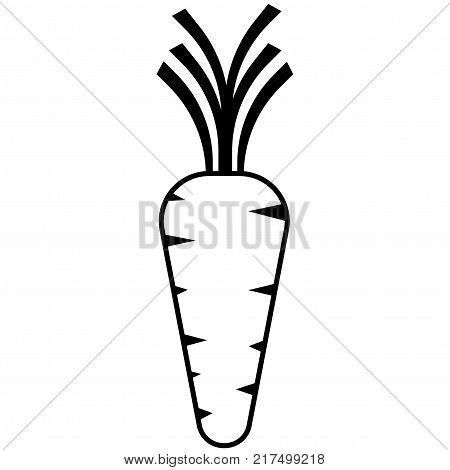 Carrot vector on white background.  Carrot Icon.
