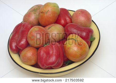 yellow basin, overflowing with red and pink fresh tomatoes and red sweet peppers