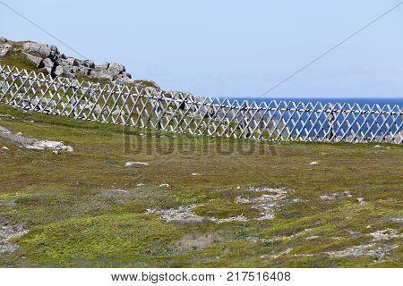 crosshatch wood fence along rocky Newfoundland coastline near Bonavista