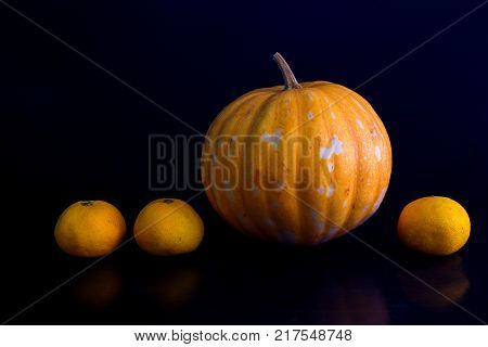 Yellow pumpkin and oranges photo on black background. Fresh vegetables and fruits harvest. Ripe orange pumpkin for Halloween decoration. Outstanding or out of line concept. Business advantage metaphor