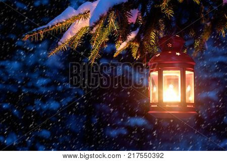 Christmas eve in a snowy forest. Christmas spirit in the night forest. Christmas tree in the snow