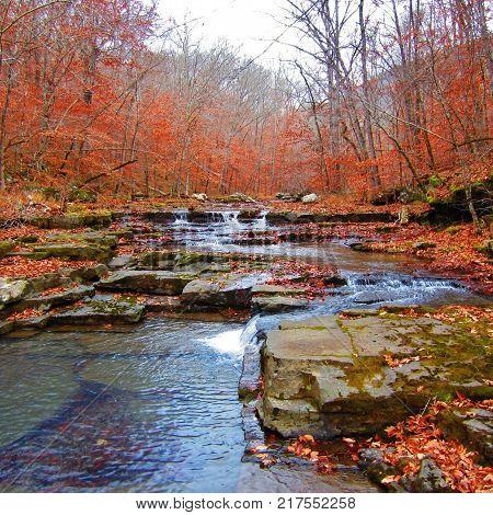 Ozak National Forest Newton County Arkansas in Fall