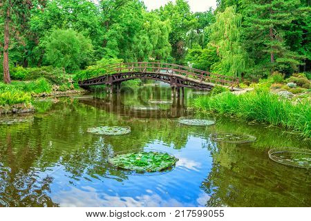View of beautiful garden with wooden walking bridge, green trees, bushes and blue sky, reflecting in a pond water. Summer natural landscape