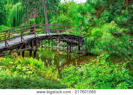 View of beautiful garden with wooden walking bridge, green trees, bushes and flowers, reflecting in a pond water. Summer natural landscape