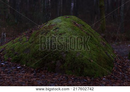 Huge stones with moss lieng against dense wood