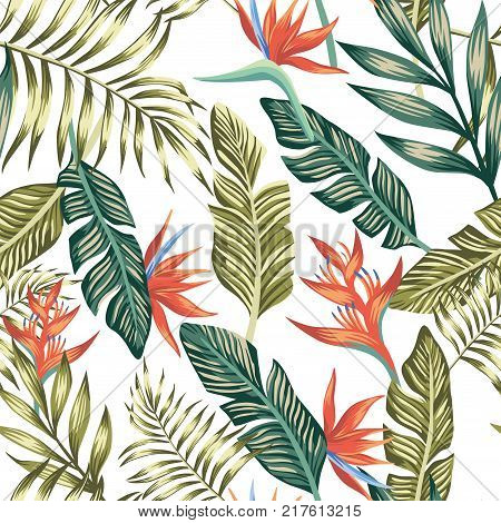 Seamless vector pattern of tropical palm leaves and flowers. Fashion nature floral beach wallpaper on a white background