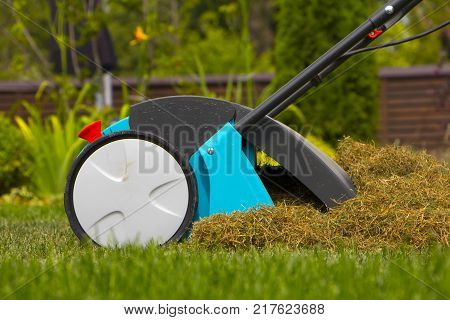 Gardener Operating Soil Aeration Machine on Grass Lawn.