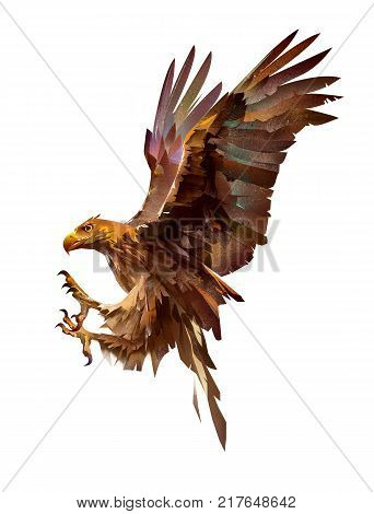 sketch attacking sketch bird eagle on white background