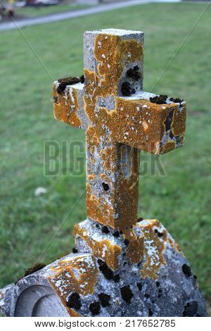 Massive stone cross mounted on headstone and almost completely covered with yellow and brown moss in front of grass background