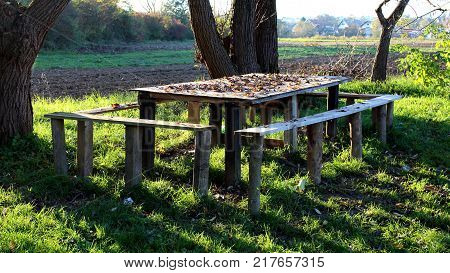 Wooden, heavily used table with four smaller benches covered in fallen autumn leaves in high uncut grass under shade of old mighty trees