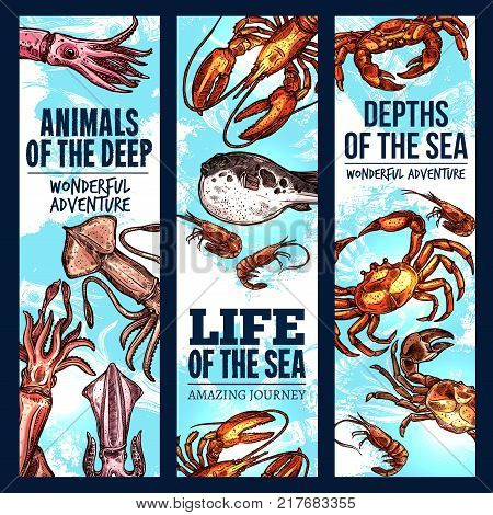 Seafood sketch banner set of deep sea fish and animal. Crab, lobster, shrimp or prawn, squid and fugu fish swimming in blue water for fishing sport trip, fish market and zoo aquarium flyer design