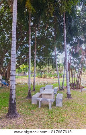 Stone table set under coconut tree in the park