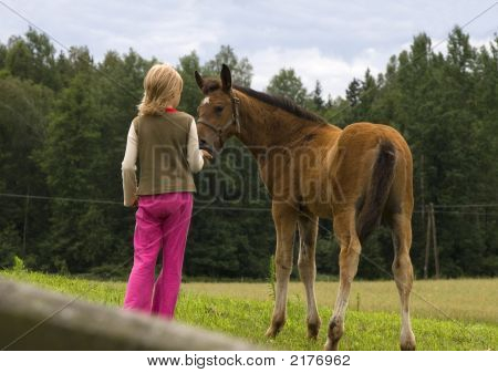 child and little horse like best friends poster