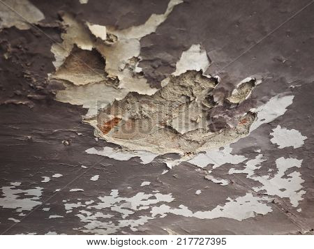 Damp Moisture On Wall And Ceiling