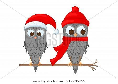 two owls on the branch in the Santa Claus hat and scarf. postcard for the new year and Christmas. Isolated objects bird on white background. Template for text and congratulations