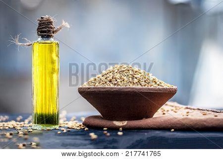 oil of Trigonella foenum-graecummethifenugreek in a clay bowl with its seed.