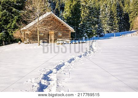 Footprints in snow leading to old wooden cabin and forest. Blaze a trail in snowy winter landscape. Allgau, Bavaria, Germany, Alps.