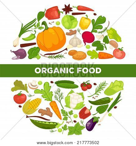 Organic food promotional poster with fresh vegetables grown at farm full of vitamins in circle isolated cartoon flat vector illustrations on white background. Healthy products advertisement banner.
