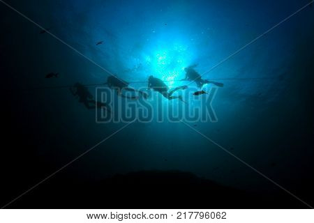 Scuba divers silhouetted against sun, descending down line