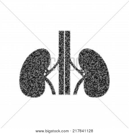 Human anatomy. Kidneys sign. Vector. Black icon from many ovelapping circles with random opacity on white background. Noisy. Isolated.