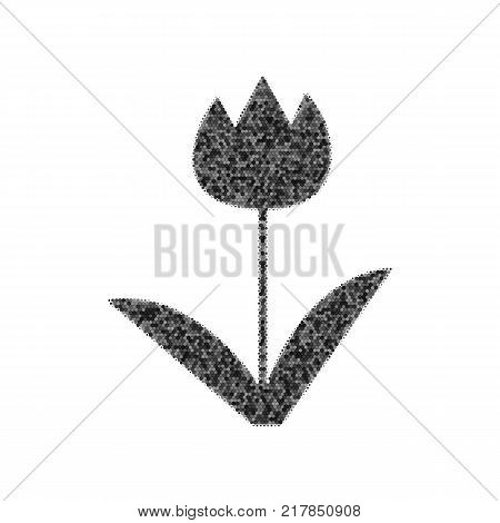 Tulip sign. Vector. Black icon from many ovelapping circles with random opacity on white background. Noisy. Isolated.