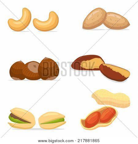 Vector illustration logo for cashew hazelnut brazil nut pistachio peanut coconut almond. Nut consisting of nutleynutshell.Eat cashewshazelnutsbrazil nuts pistachiospeanutscoconutsalmonds.