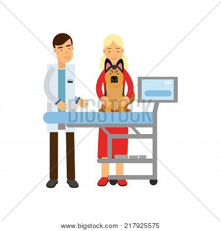 Veterinary doctor examining sheepdog in vet clinic colorful cartoon vector Illustration isolated on a white background