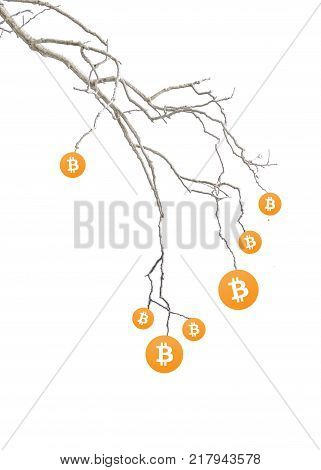 Bitcoin Rise Conceptual Drawing