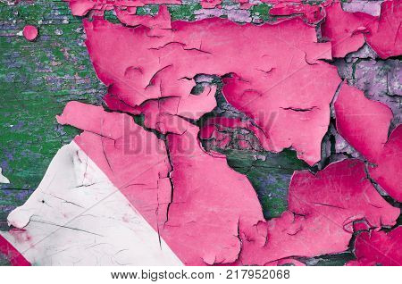 Texture background of pink peeling paint on the wooden texture surface, closeup of peeling paint texture on the old grunge background. Peeling paint texture, texture background of pink peeling paint