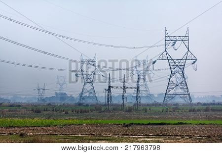 Transmission towers of lines of high voltage similar to very big owls and other exotic mythical animals standing on the Indian plain.
