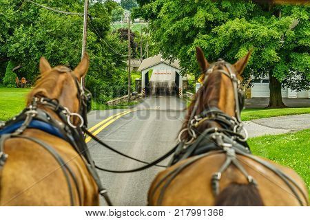 Amish country farm field agriculture and hoses in Lancaster PA US
