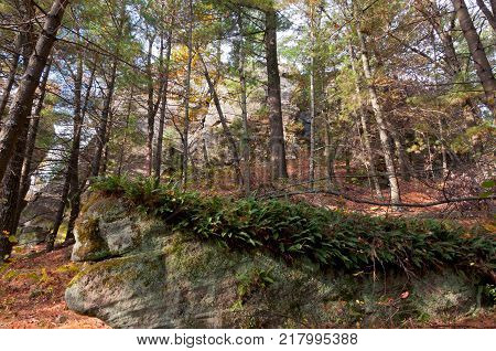 rock forms and forest scenery of petenwell bluff in juneau county necedah wisconsin