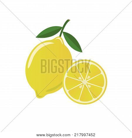 Fresh juicy lemon fruit isolated on a white background. Colorful half and whole lemon with a leaf. Perfect for juice or jam. Vector illustration.