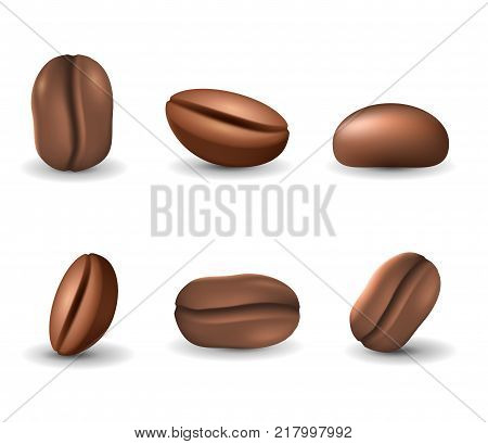 Set of coffee beans isolated on the white background. Realistic vector illustration. Picture with different coffee seeds.