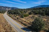 Asphalt road bends into a wood of evergreen trees in southern California's Los Padres National Forest. poster
