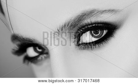 Beauty Woman Eyes. Pretty Woman With Perfect Eyelashes. Female Beauty Visage Concept For Eyes. A Pro