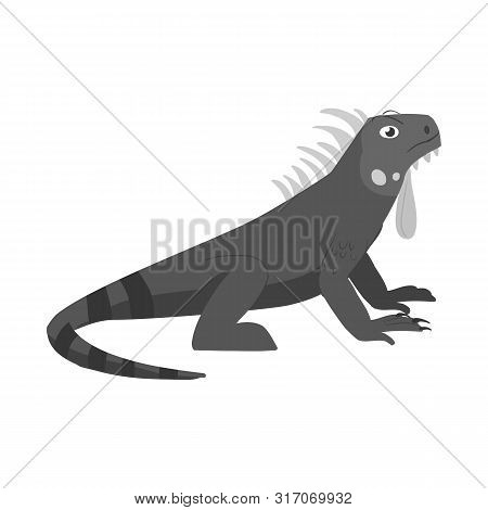 Vector Design Of Iguana And Lizard Logo. Collection Of Iguana And Colorful Stock Vector Illustration